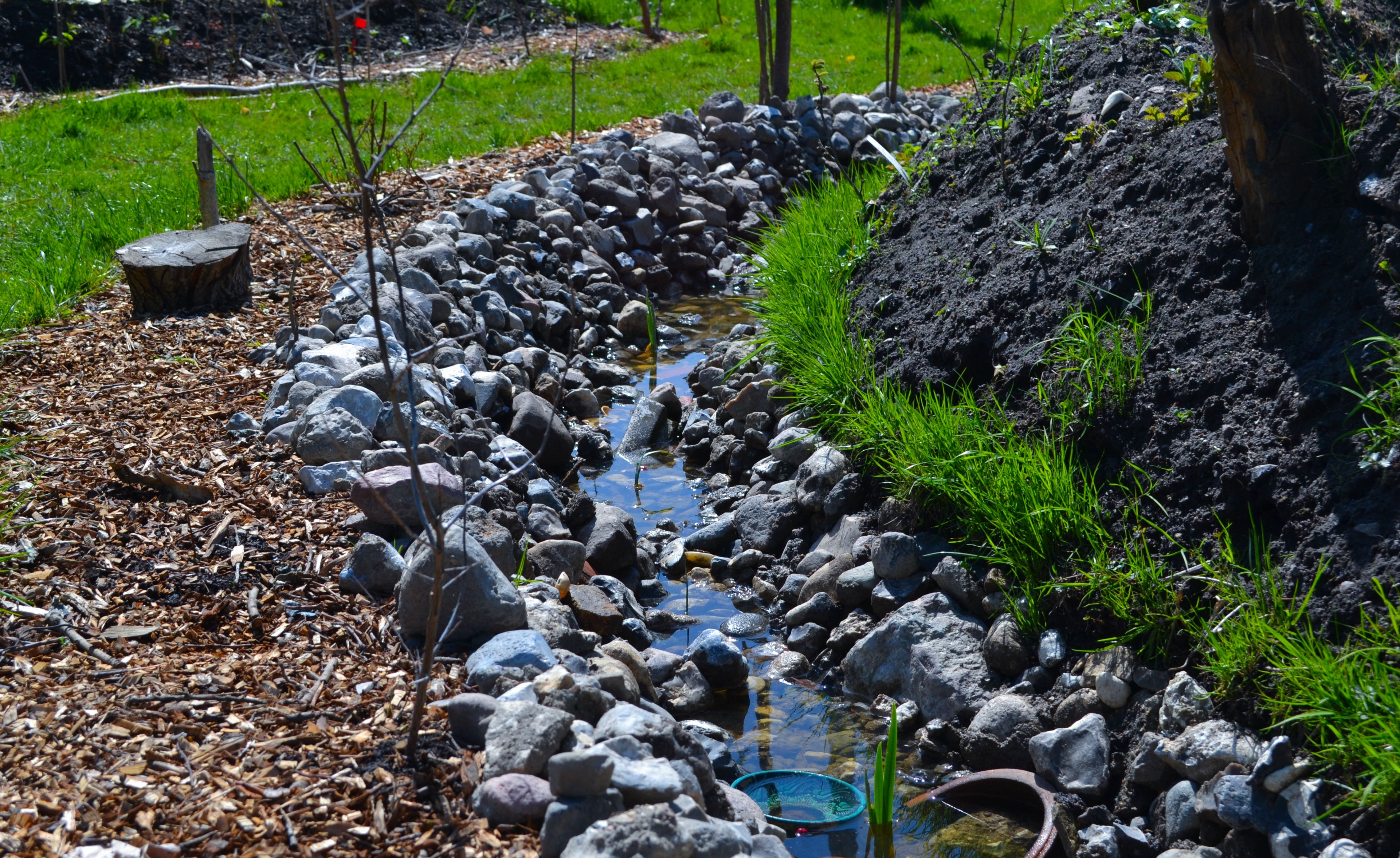 About Bioswales And How They Help With Excessive Water - Groby Landscapes