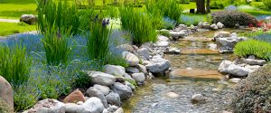 water-landscapes
