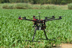 drone-crops