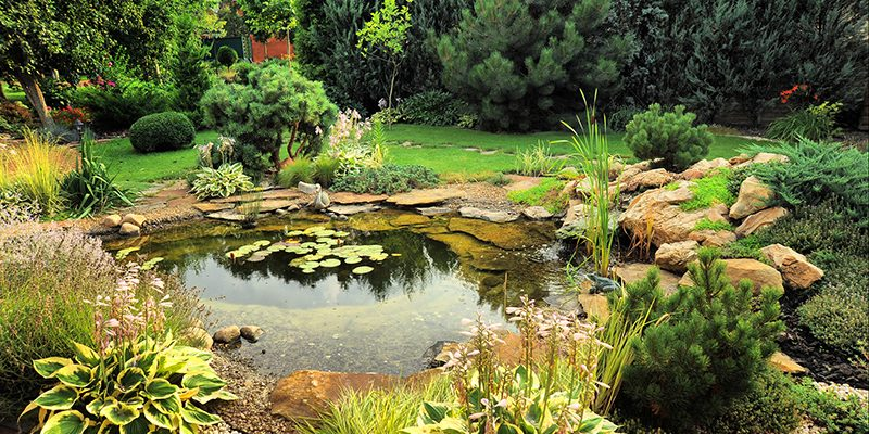 Summer Garden Ideas - Groby Landscapes